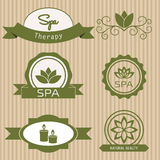 Set of design elements  for spa salon. Stock Photos