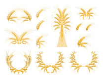 Set of Design Elements with Wheat. Computer illustration, isolated on the white Royalty Free Stock Images