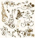 Set of design floral elements Stock Images