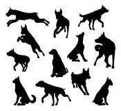 Dog Silhouettes Animal Set. A set of detailed animal silhouettes of a pet dog royalty free illustration