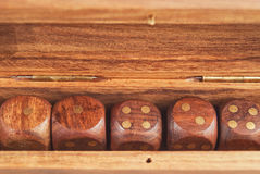 Set of dice in a wooden box close-up Stock Images