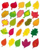 Set of different abstract colored leaves Royalty Free Stock Photography