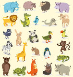 Set of different animals. birds, mammals, reptiles. vector drawing Stock Photography