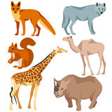 Set  different animals fox, wolf, giraffe Royalty Free Stock Image