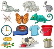 Set of different animals and other home items on white background