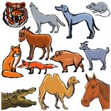 Set of different animals Royalty Free Stock Photo