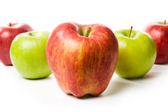 Set of different apples Royalty Free Stock Photo