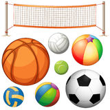 Set of different balls and net Royalty Free Stock Photography