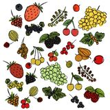 Set of different berries painted in the style of children`s drawing fast by hand. Sketch vector graphics colored drawing royalty free illustration