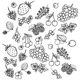 Set of different berries painted in the style of children`s drawing fast by hand. Sketch vector graphics monochrome drawing stock illustration