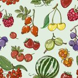 Set of different berries pattern. Vector fruit mix. Illustration for healthy eating and organic foods Stock Images