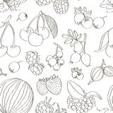 Set of different berries pattern. Vector fruit mix. Illustration for healthy eating and organic foods Royalty Free Stock Photography