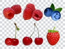 Set of different berries at transparent background realistic vector illustration. Raspberry strawberry cherry blueberry. Set of different berries at transparent Stock Illustration