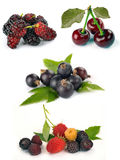 Set of different berries Stock Photo