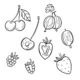 A set of different berries on a white background. Gooseberries, cherries, strawberries, raspberries vector illustration