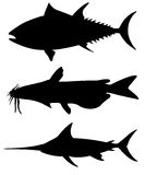 Set of different big fish silhouettes Royalty Free Stock Photography