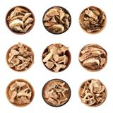 Set of different bowls with dried mushrooms on white background. Flat lay stock photo