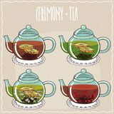 Set of different brewed black and green teas. With lemon, chamomile, rosehip. Beige background and ornate lettering Ceremony tea. Handmade cartoon style royalty free illustration