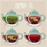 Set of different brewed flower and berry teas. With currant, raspberry, anise, hibiscus. Beige background and ornate lettering Ceremony tea. Handmade cartoon Royalty Free Stock Photo