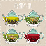 Set of different brewed herbal teas Stock Photography