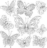 Set of different butterflies with beautiful wings Royalty Free Stock Image