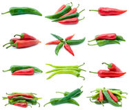 Set of different chili peppers. Isolated on the white background Stock Image
