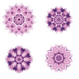 Set of different circular symmetric patterns Stock Images