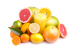 Set of different citrus and juice. Set of different citrus fruit and juice on white background Stock Image