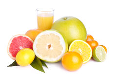 Set of different citrus and juice. Set of different citrus fruit and juice on white background Stock Photography