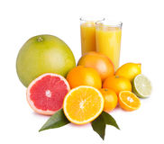 Set of different citrus and juice. Set of different citrus fruit and juice on white background Royalty Free Stock Image