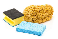 Set of different cleaning sponges over white background Stock Photography