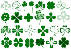 Set Of Different Clovers Set Royalty Free Stock Photography