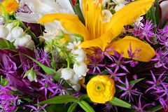 Set of different colorful flowers. Bouquet top view. Royalty Free Stock Image