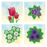Set Of Different Colorful Flowers Isolated Stock Photo