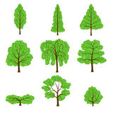 Set different crown of a trees isolated on white Royalty Free Stock Photography