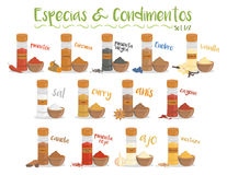 Set of 13 different culinary species and condiments in cartoon style. Set 1 of 2. Spanish names. Vector Illustration Stock Photos