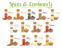 Set of 13 different culinary species and condiments in cartoon style. Set 1 of 2. Vector Illustration Stock Photography