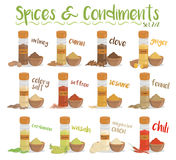 Set of 12 different culinary species and condiments in cartoon style. Set 2 of 2. Vector Illustration Stock Image