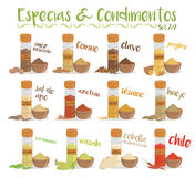Set of 12 different culinary species and condiments in cartoon style. Spanish names. Stock Images