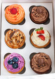 Set of different  cupcakes in a box. Set of different delicious cupcakes in a paper box Royalty Free Stock Images