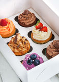 Set of different  cupcakes in a box. Set of different delicious cupcakes in a paper box Stock Photos