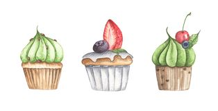 Set of different cupcakes isolated on white background. Watercolor illustration royalty free illustration