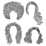 Set of  different curly hairs . fashion beauty african style . fringe  pencil drawing sketch. Set of  different curly hairs .. fashion beauty african style vector illustration