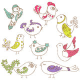 Set of different cute birds Stock Photo