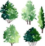 Set of different deciduous trees Stock Photography