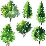 Set of different deciduous trees Royalty Free Stock Photography