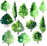 Set of different deciduous trees Royalty Free Stock Photos