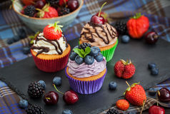 Set of different delicious cupcakes Stock Photography
