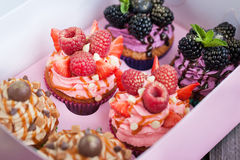 Set of different delicious cupcakes Stock Photos