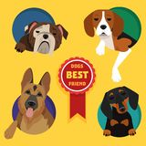Set of different dog breeds. Stock Photography